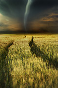 Harvest Time Prints - Path in wheat fields with storm looming Print by Sandra Cunningham