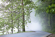 Cades Cove Photo Posters - Path into the Fog Poster by Andrew Soundarajan