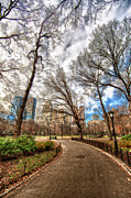 Central Park Prints - Path Through Central Park Hdr Print by HDRExposed - Dave DiCello Photography