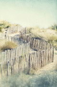 Languedoc Prints - Path Through Dunes Print by Paul Grand Image