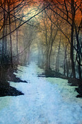 Wintry Photo Prints - Path Through the Woods in Winter at Sunset Print by Jill Battaglia