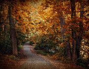 Earth Tones Metal Prints - Path to Autumn  Metal Print by Jessica Jenney