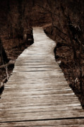 Jeannie Burleson Art - Path to Nowhere by Jeannie Burleson
