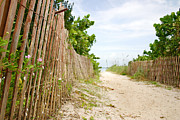 Warm Summer Photo Prints - Path to the Beach Print by Matt Tilghman