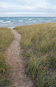 Traverse Posters - Path to the Beach Poster by Twenty Two North Photography