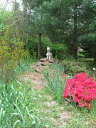 Azalea Bush Photo Prints - Path to the Dragon  Print by Nancy Patterson