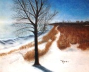 Chicago Pastels Posters - Pathway at Summit Beach Poster by Terry Jenkins