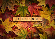 Forgive Prints - PATIENCE-Autumn Print by  Onyonet  Photo Studios