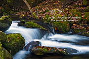Motivational Sayings Prints - Patience Print by Paul W Faust -  Impressions of Light