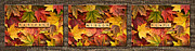 Forgive Prints - PATIENCE WISDOM PEACE-Autumn Triptych Print by  Onyonet  Photo Studios