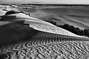 Australian Landscape Prints - Patterns Of The Desert Print by Heather Thorning
