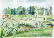Jan Anderson Watercolors - Pauls  Early Summer Garden by Jan Anderson