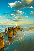 Pawleys Island Prints - Pawleys island Print by Matthew Trudeau