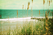Pawleys Island Prints - Pawleys Island South Carolina Print by Kim Fearheiley
