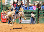 Photos Of Rodeo Events Posters - PBR Bucking Events Poster by Cheryl Poland