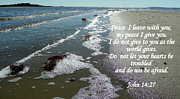 Acrylic Seascape Digital Art Posters - Peace I Leave You Poster by Sheri McLeroy