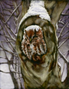 Winter Storm Mixed Media Framed Prints - Peace in the Storm - Eastern Screech Owl Framed Print by Susan Donley