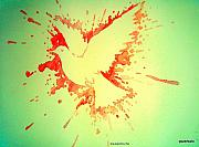 Peace Dove Mixed Media - Peace Made by War by Paulo Zerbato