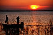 Fishing Photos - Peace over the water by Susanne Van Hulst