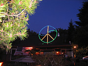 Umbrella Pine Posters - Peace Sign On House Poster by Kym Backland