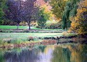 Prosser Acrylic Prints - Peaceful Autumn Park Acrylic Print by Carol Groenen