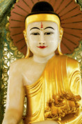 Rangoon Prints - Peaceful Buddha Print by Michele Burgess