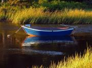 Row Boat Prints - Peaceful Cape Cod Print by Juergen Roth