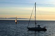 Sail Boat Photos - Peaceful Day In Santa Barbara by Clayton Bruster