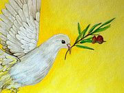 Dove Drawings Metal Prints - Peaceful Dove Metal Print by Ann Marie Napoli