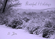 Snowy Holiday Card Posters - Peaceful Holidays to You Poster by Carol Groenen