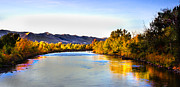 Payette River. Posters - Peaceful Morning  Poster by Robert Bales