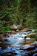 Peaceful Mountain River Print by Lisa Holmgreen