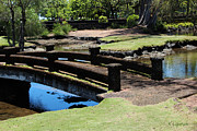 Lilioukalani Metal Prints - Peaceful Pathways - Queen Liliuokalani Park and Japanese Gardens Metal Print by Kerri Ligatich