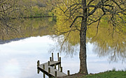 Fishing Dock Posters - Peaceful Shenandoah Spring Poster by Lara Ellis