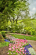 Cheekwood Prints - Peaceful Spring Park Print by Cheryl Davis