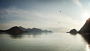 Sunset In Norway Photo Prints - Peaceful Sunset Over Water Print by Caterina Bernardi