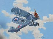 Airplanes Prints - Peacetime Gladiator Print by Murray McLeod