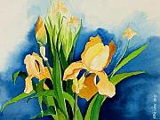 Green Painting Originals - Peach Irises by Janis Grau
