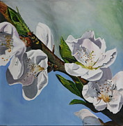 Tree Blossoms Paintings - Peach tree Blossoms by Betty-Anne McDonald