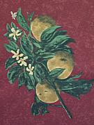 Still-life With Peaches Prints - Peaches And Blossoms Print by Laurinda Stanton