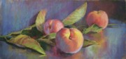 Donna Shortt Prints - Peaches Print by Donna Shortt
