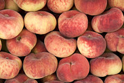 Season Art - Peaches by Jane Rix