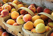 Peaches Photo Metal Prints - Peaches Metal Print by Kristin Elmquist