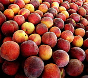 Peach Photo Originals - Peaches by Tanya  Searcy