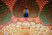 Peacock Door Print by Dena Rupp