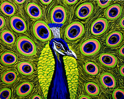 Exotic Bird Paintings - Peacock Mistique by Adele Moscaritolo