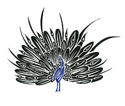 Peacock Drawings Metal Prints - Peacock  Metal Print by Raiyan Talkhani