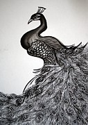 Sumie Framed Prints - Peacock Sumie Ink Framed Print by Alma Yamazaki