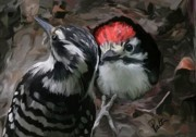 Woodpecker Paintings - Peak a Boo by Patti Siehien