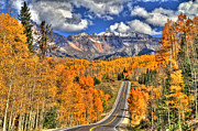 Colorado Springs Art - Peak Highway by Scott Mahon